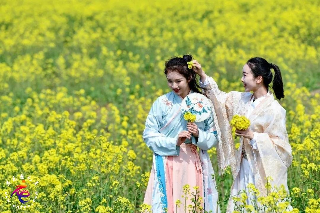 清明假期来台儿庄古城赏花、踏青、春游,莫负四月好春光。