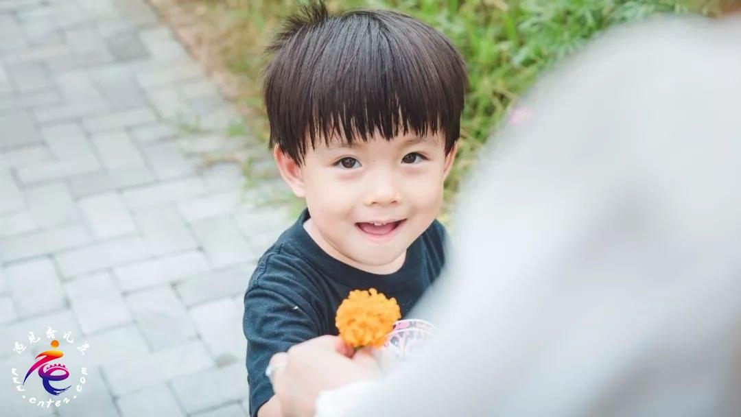 清明好时节·花香满中国 | 央视四套报道:台儿庄双龙湖湿地观鸟园春之盛景!