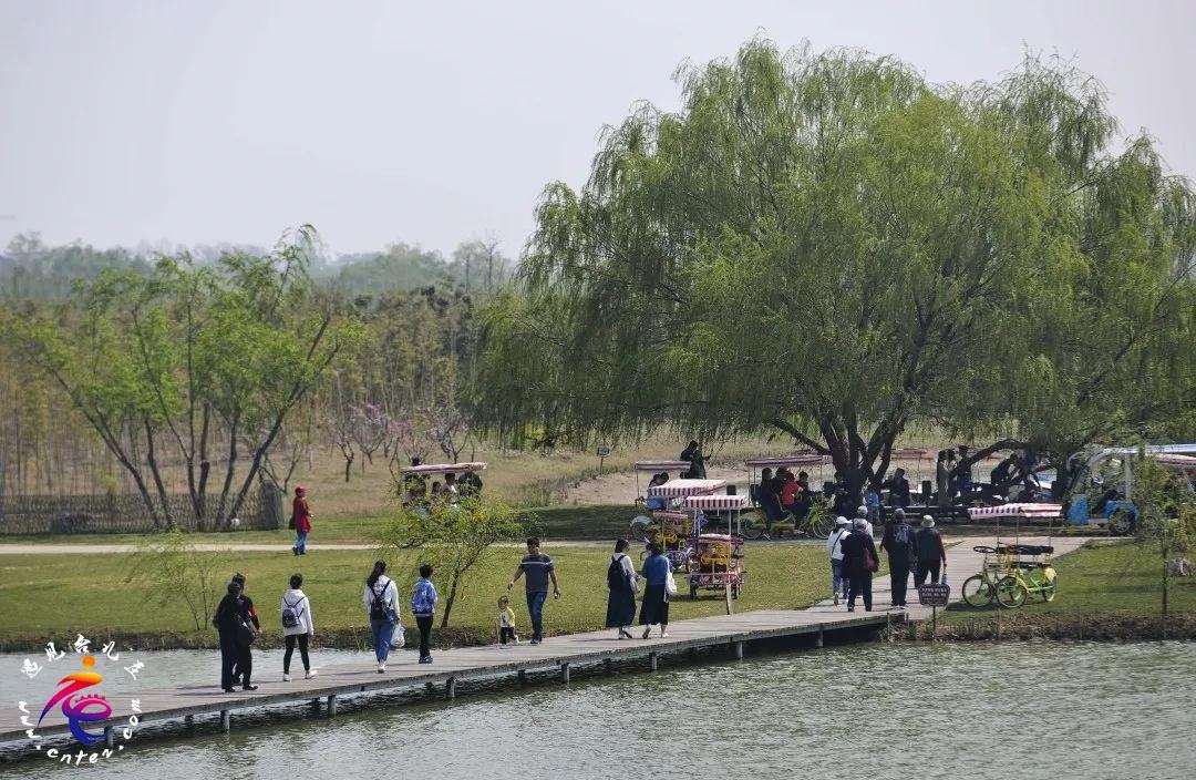 春天的双龙湖:铺陈迷人的春游画卷