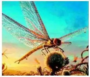 远古生物图鉴:大多数人都不知道,有种蚊子比你的头还大