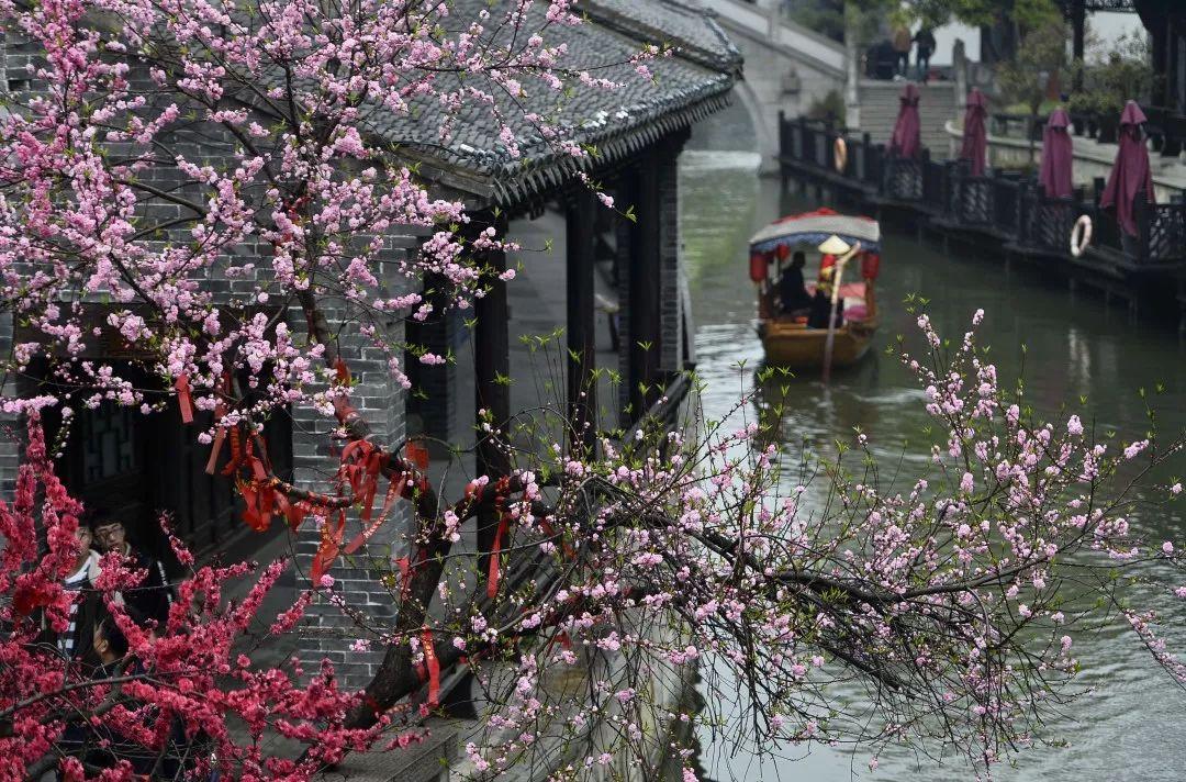 台儿庄古城3.28盛大开园   我们准备好了,春暖花开,繁花与共,就等你来!