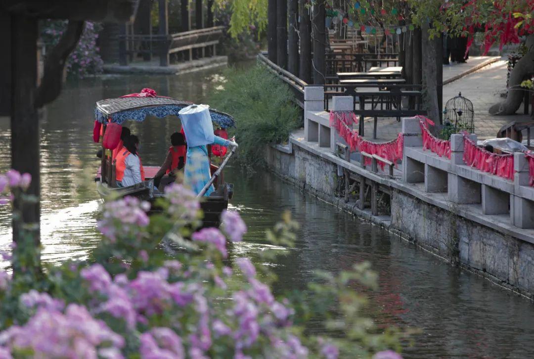 周末好去处 | 独享美景,与初夏的台儿庄古城相约